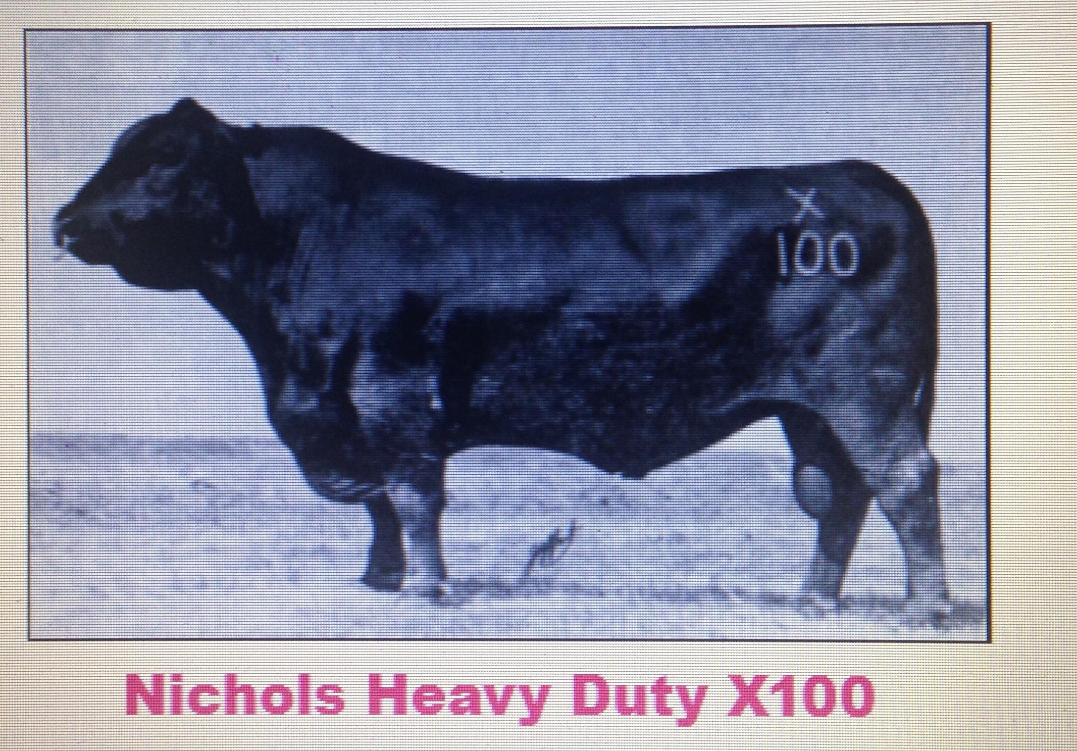 8 straws of Nichols Heavy Duty